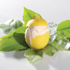 Limoncello-and-honeybush frozen yoghurt