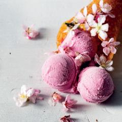 Home-made raspberry frozen yoghurt with brandy-snap cones