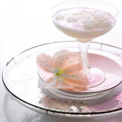 ... with ginger champagne holiday punch grapefruit and champagne sherbet