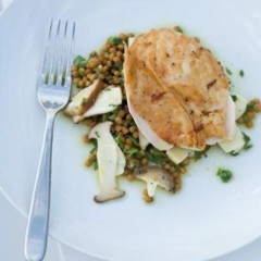 Christmas turkey served on a bed of lentil salad and lemony mushrooms