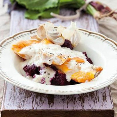 Haddock fillets with a beetroot puree and garlic cream