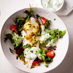 Kabeljou and strawberries with tzatziki and granadilla dressing