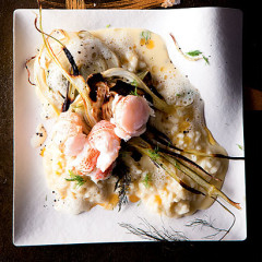 Langoustine risotto with roast fennel, avogolemono sauce and gold salt