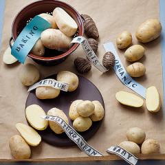 Modern potato bake