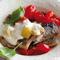 Pan-roasted snoek with tomato and lemon creme fraiche