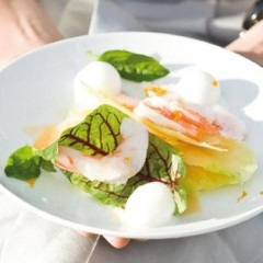 Sweet melon shavings and coral prawns served with balls of lime sorbet