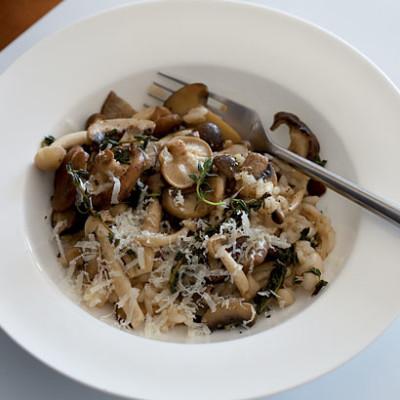 Wild mushroom risotto | Woolworths TASTE