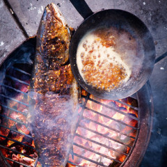 Yellowtail on the coals with sticky apricot vanilla and ginger glaze