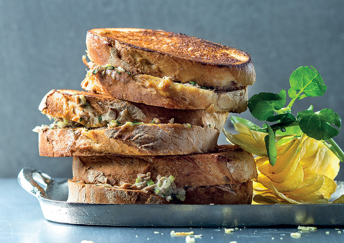 Toasted tuna mayo sandwich recipe