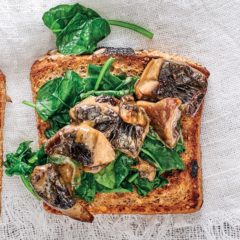 Creamy mushrooms and spinach on toast