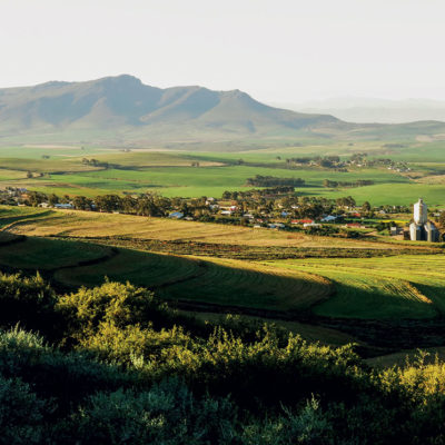 Where to eat in the Swartland