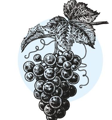 7 hot winter wines