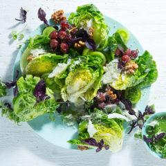 The cheeseboard salad