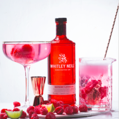 This berry-flavoured gin is the perfect autumn drink