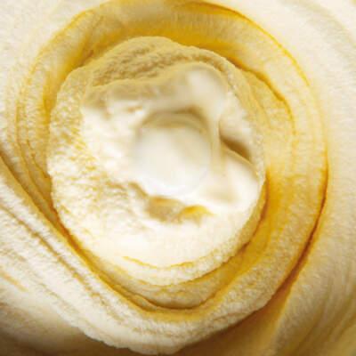 Vanilla ice-cream base