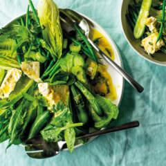 Minty green salad