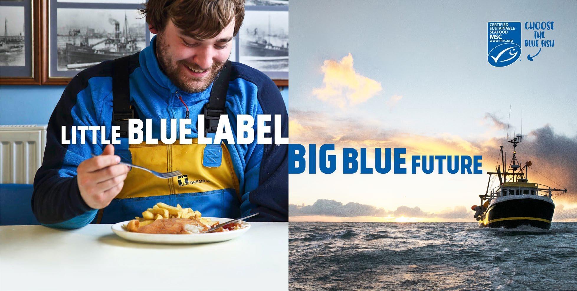 msc-blue-label
